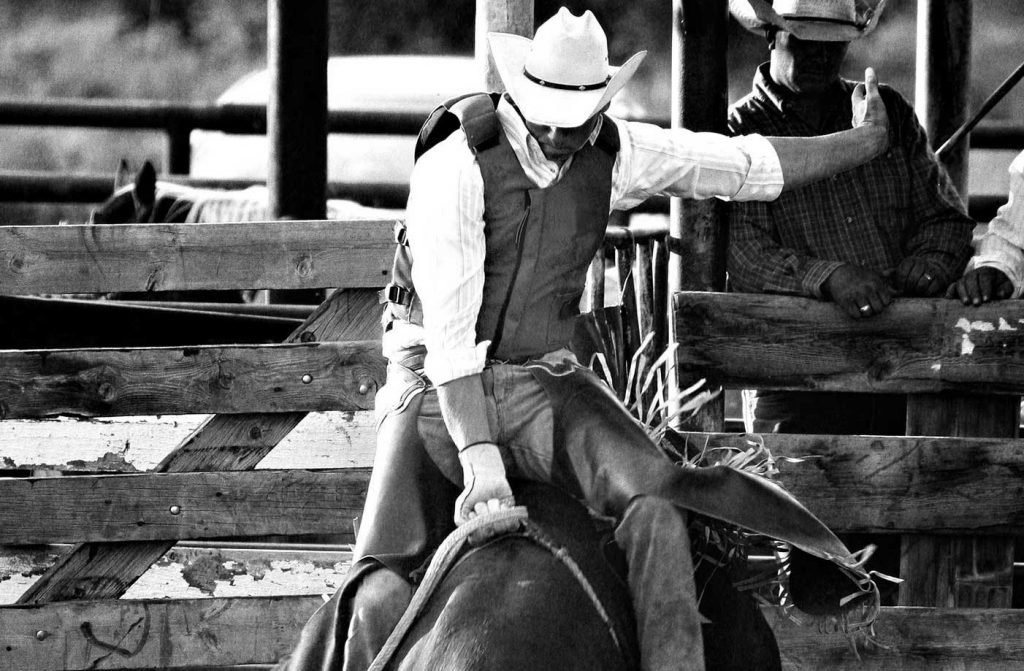 Black And White Rodeo Cowboy Bull Riding